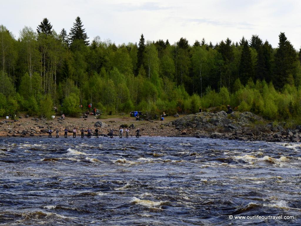 Crowd of anglers on Finnish side at Matkakoski rapid