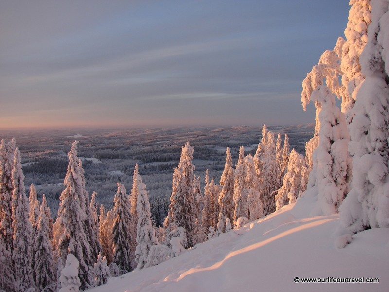Winter landscape at Koli National Park, Finland