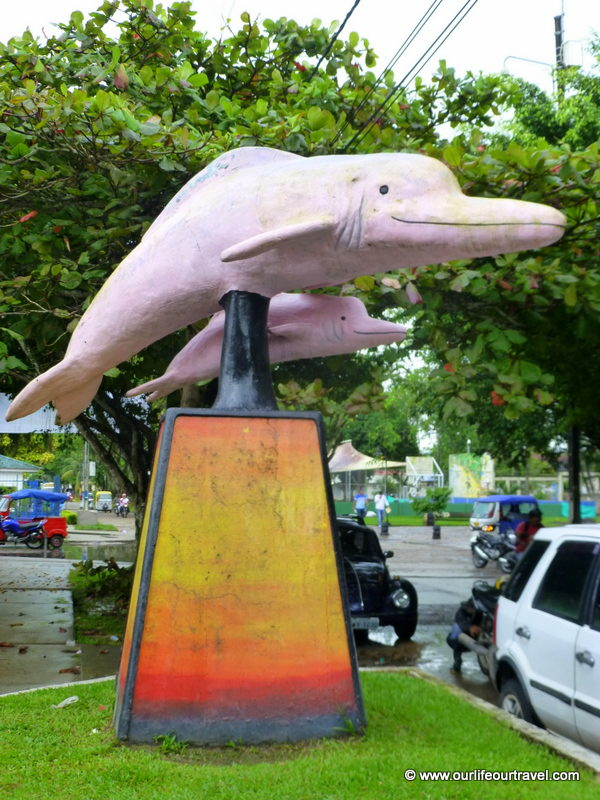The pink dolphins are also popular here. Leticia, Colombia.