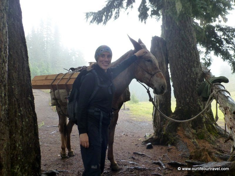 Katalin (foreground) and mule (back).
