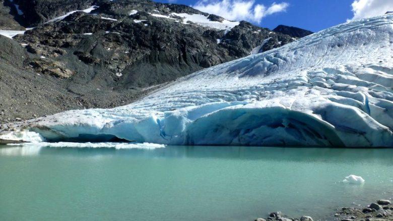 Glacier nearest to Wedgemount Lake