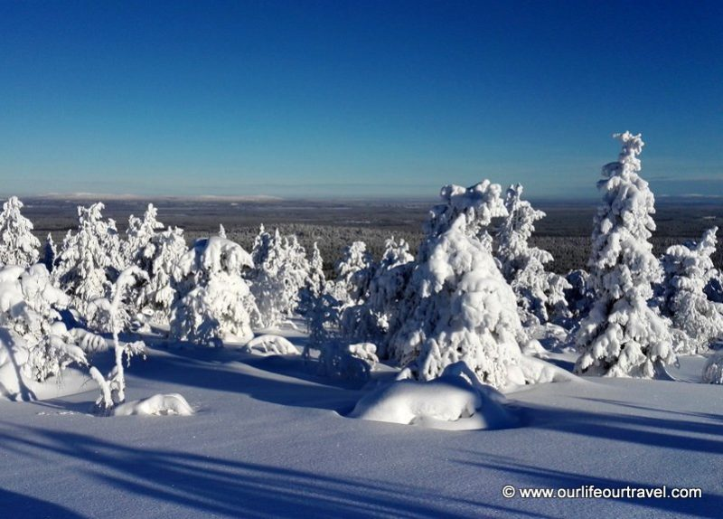 On top of Pyhä-Luosto National Park, Lapland, Finland