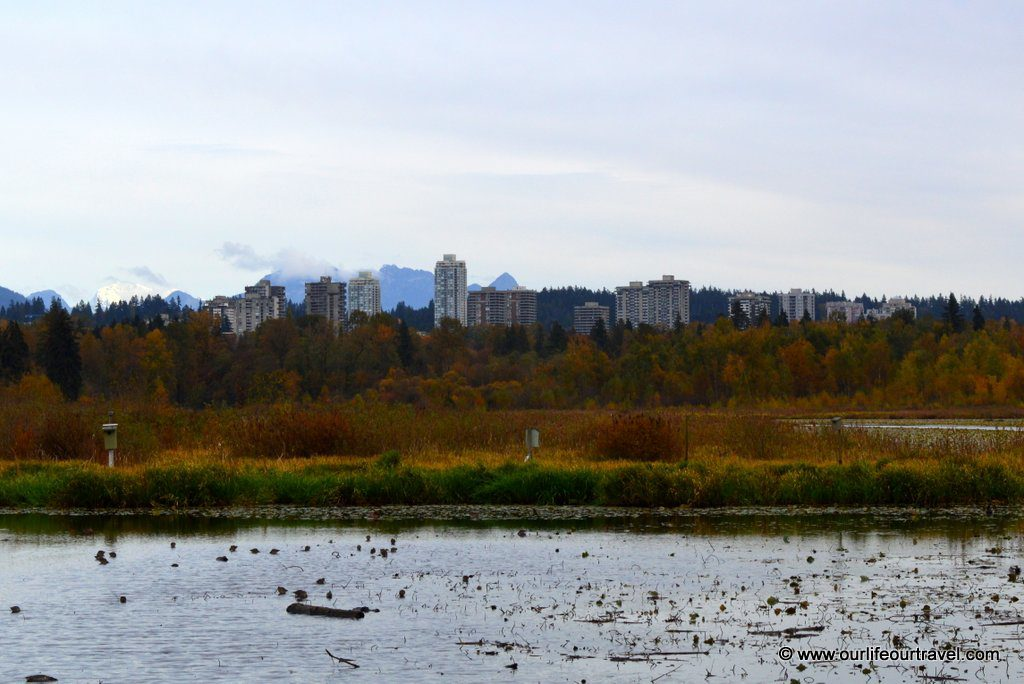 Burnaby seen from the lakeside