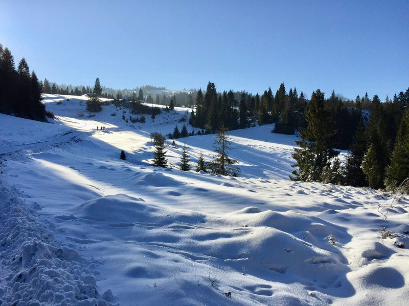Snowshoeing in the Tatras at the border of Poland and Slovakia