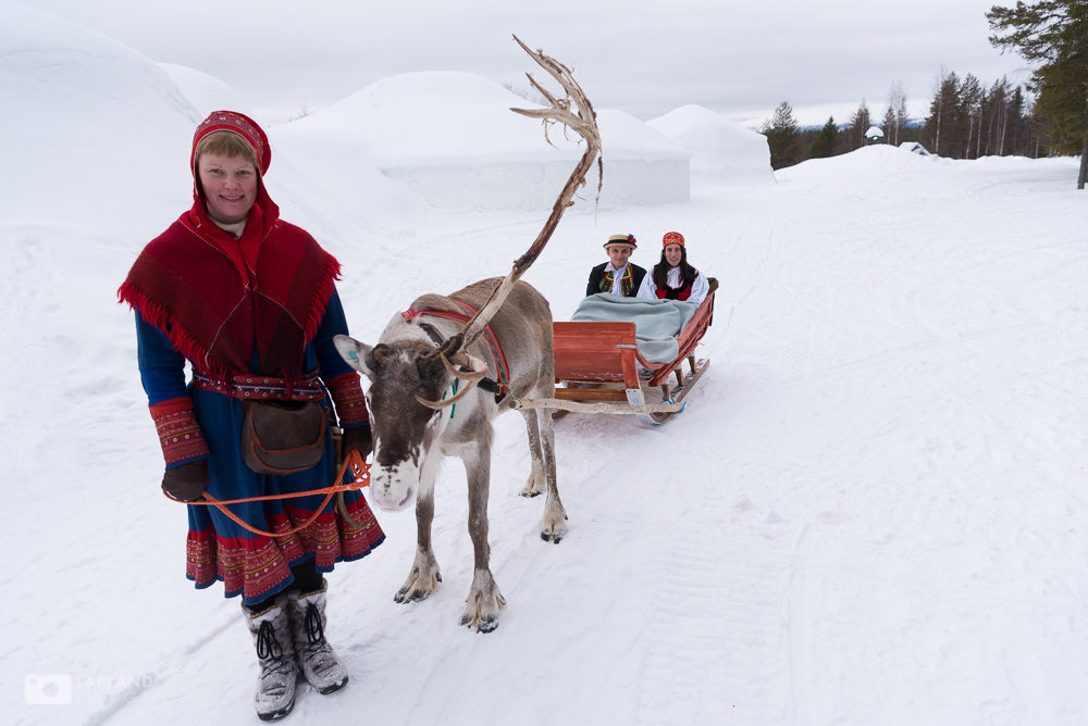 Arrival for the wedding by reindeer Lainio Snow Village, Lapland, Finland