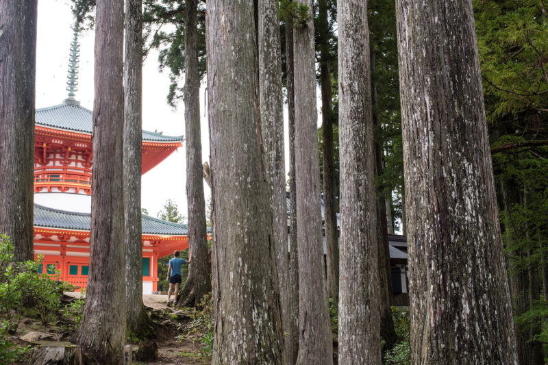 Koyasan Hike, One of the best Hikes in Japan